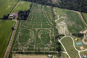 Abirds eye view of York Maze 2013