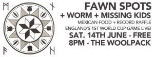 Fawn Spots Gig York Music